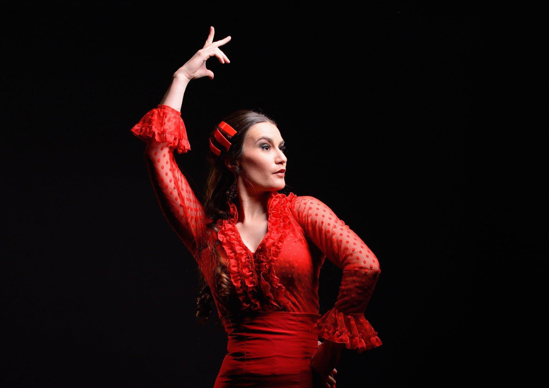 Flamenco Puro !